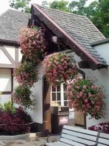 дом с ампельными растеними