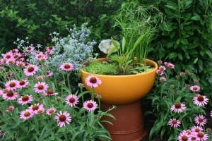 Оригинальная ваза с растениями