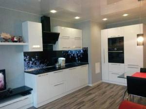 кухня совмещённая с команатой