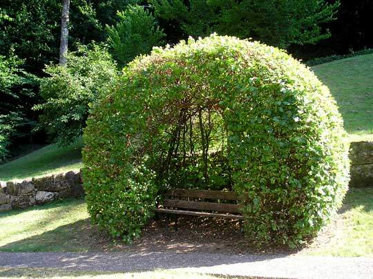 скамейка шар