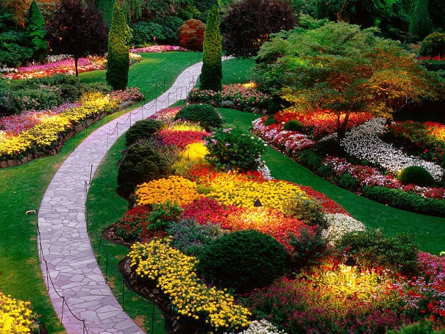Яркая клумба с цветами