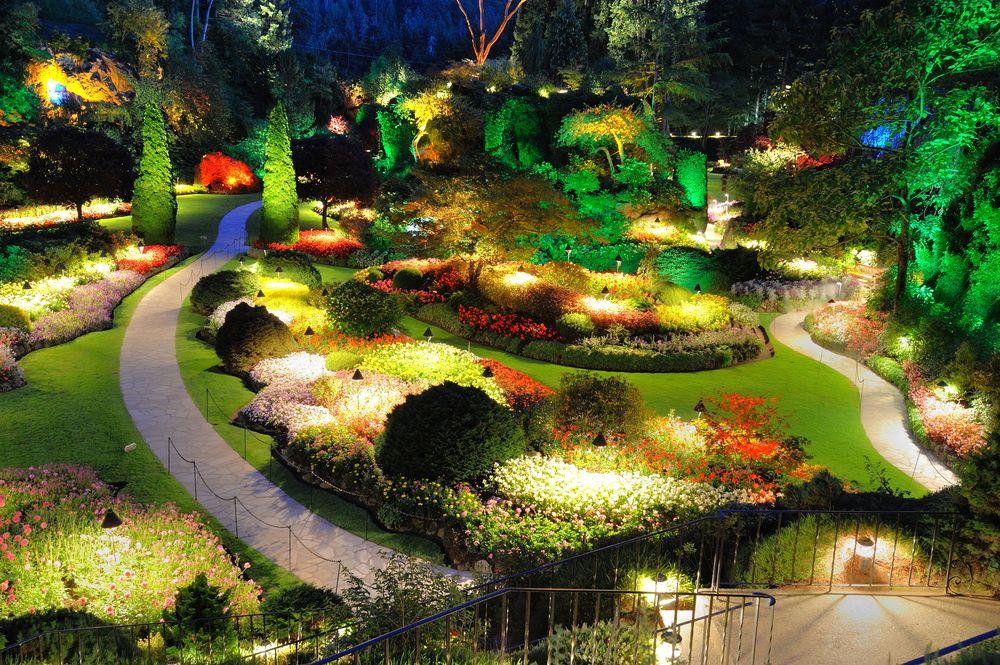 Освещенный сад