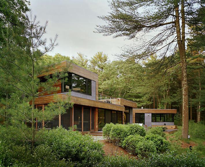 дом лес