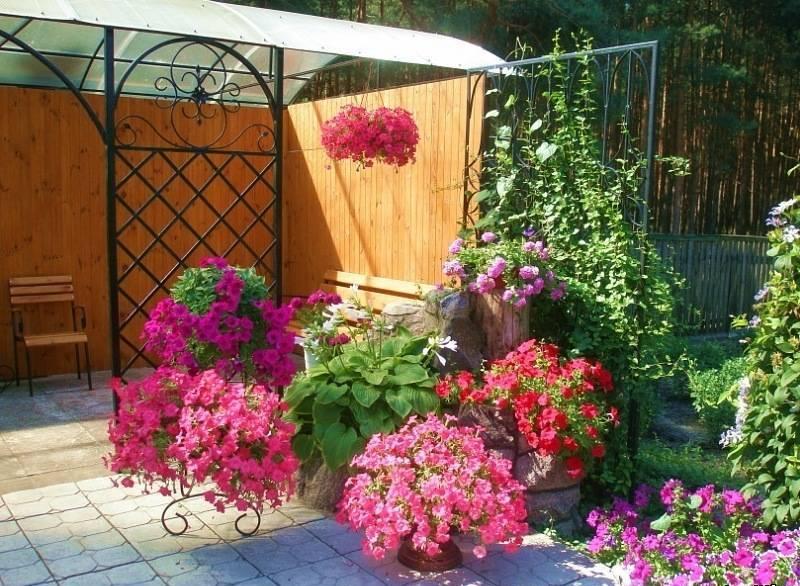 Беседка с выносными растениями