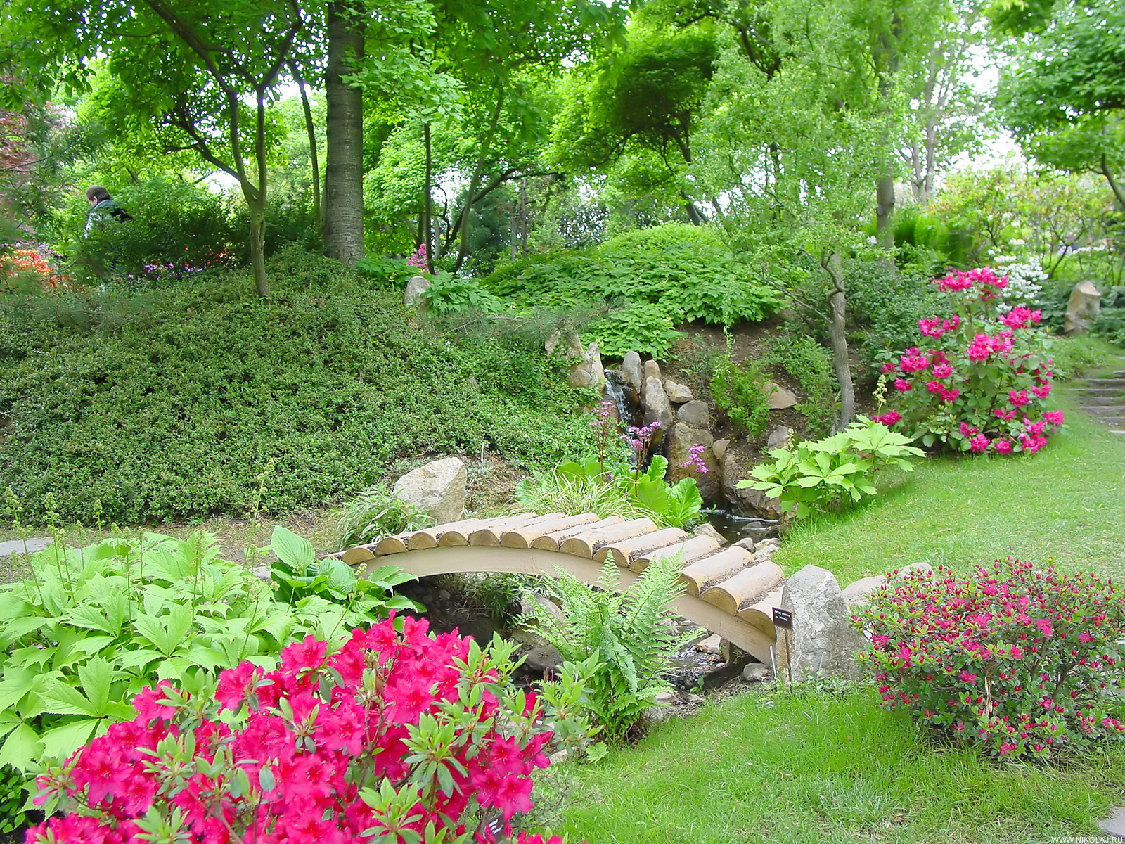 Элементы дизайна в саду