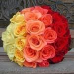 Основы и секреты флористики для начинающих