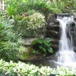 dekorativny-j-vodopad